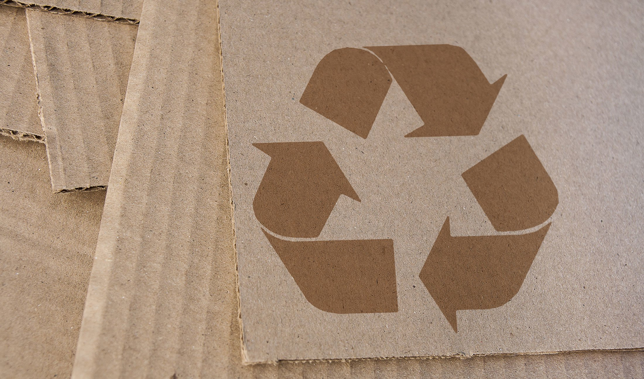 Sustainable-packagingq